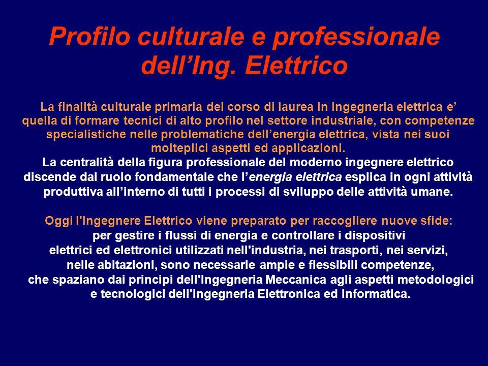 Profilo culturale e professionale dellIng.