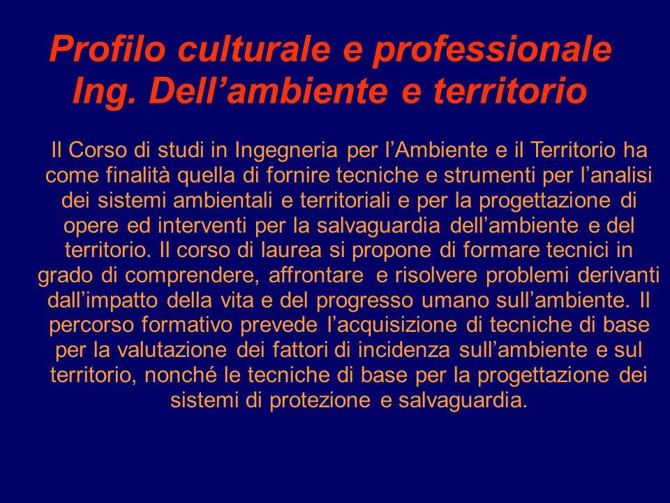 Profilo culturale e professionale Ing.