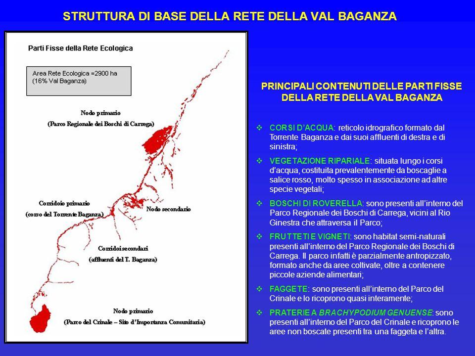 STRUTTURA DI BASE DELLA RETE DELLA VAL BAGANZA PRINCIPALI CONTENUTI DELLE PARTI FISSE DELLA RETE DELLA VAL BAGANZA CORSI DACQUA: reticolo idrografico