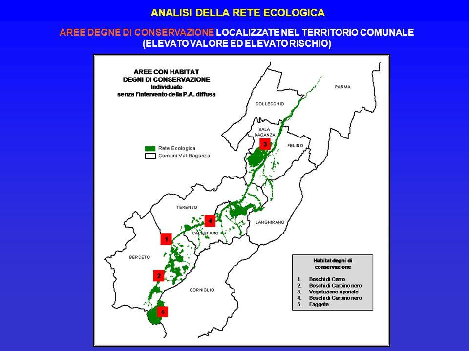 AREE DEGNE DI CONSERVAZIONE LOCALIZZATE NEL TERRITORIO COMUNALE (ELEVATO VALORE ED ELEVATO RISCHIO) ANALISI DELLA RETE ECOLOGICA