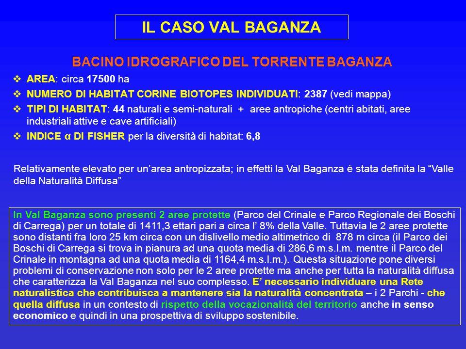 IL CASO VAL BAGANZA BACINO IDROGRAFICO DEL TORRENTE BAGANZA AREA: circa 17500 ha NUMERO DI HABITAT CORINE BIOTOPES INDIVIDUATI: 2387 (vedi mappa) TIPI