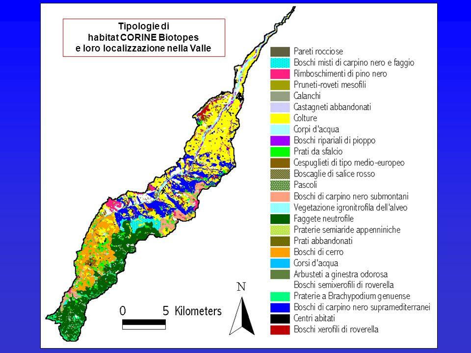 Tipologie di habitat CORINE Biotopes e loro localizzazione nella Valle