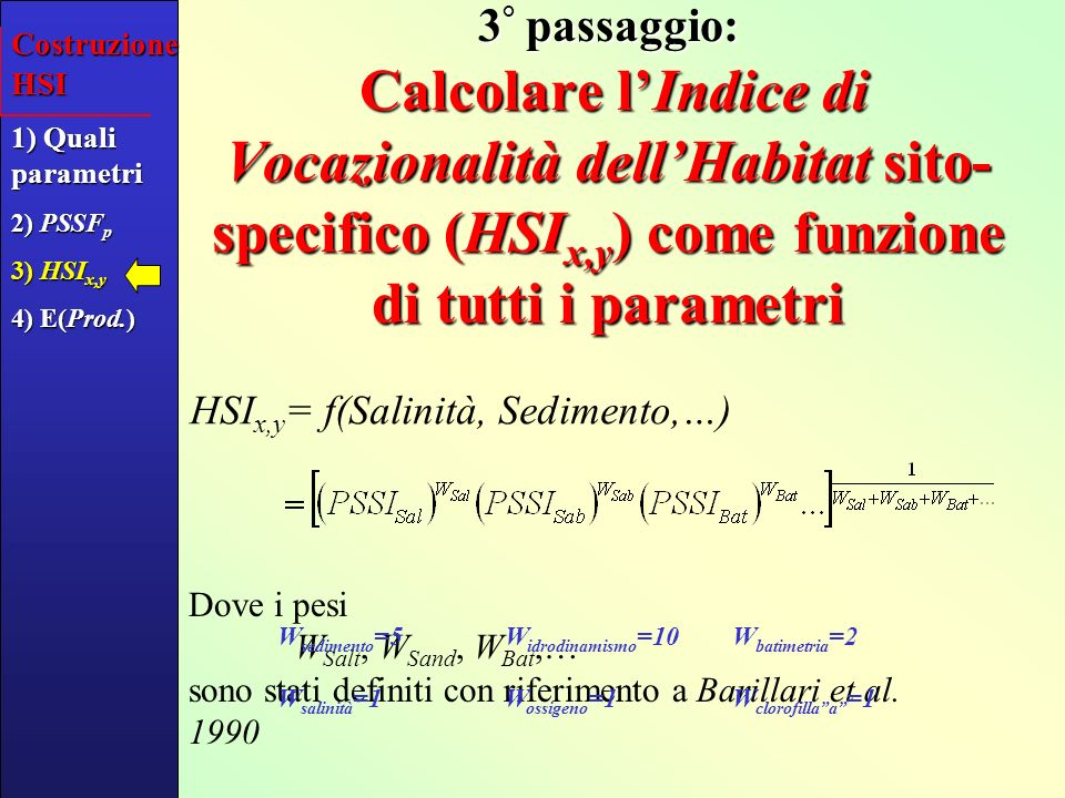 4 ° passaggio: Associare la produttività attesa [in kg m -2 y -1 ] a HSI Costruzione HSI 1) Quali parametri 2) PSSF p 3) HSI x,y 4) E(Prod.) HSI E[Prod] (kg m -2 y -1 )