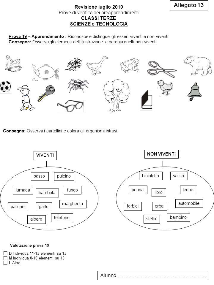 Allegato 13 Revisione luglio 2010 Prove di verifica dei preapprendimenti CLASSI TERZE SCIENZE e TECNOLOGIA Alunno………………………………………………… Prova 19 – Apprendimento : Riconosce e distingue gli esseri viventi e non viventi Consegna: Osserva gli elementi dellillustrazione e cerchia quelli non viventi Consegna: Osserva i cartellini e colora gli organismi intrusi VIVENTI lumaca bambola gattopallone sassopulcino margherita telefono albero fungo NON VIVENTI penna libro erbaforbici biciclettasasso automobile bambino stella leone Valutazione prova 19 B Individua 11-13 elementi su 13 M Individua 8-10 elementi su 13 I Altro