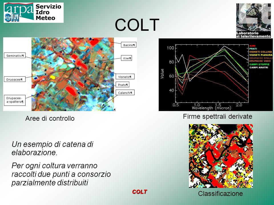 COLT Un esempio di catena di elaborazione. Per ogni coltura verranno raccolti due punti a consorzio parzialmente distribuiti Aree di controllo Classif