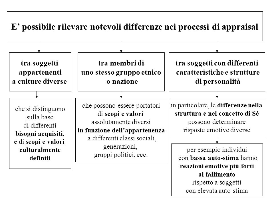 E possibile rilevare notevoli differenze nei processi di appraisal tra soggetti appartenenti a culture diverse tra membri di uno stesso gruppo etnico