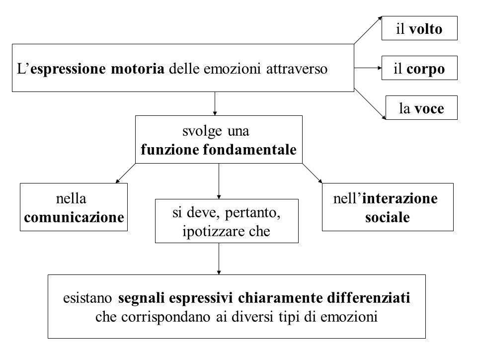 Lespressione motoria delle emozioni attraverso il volto il corpo la voce svolge una funzione fondamentale nella comunicazione nellinterazione sociale