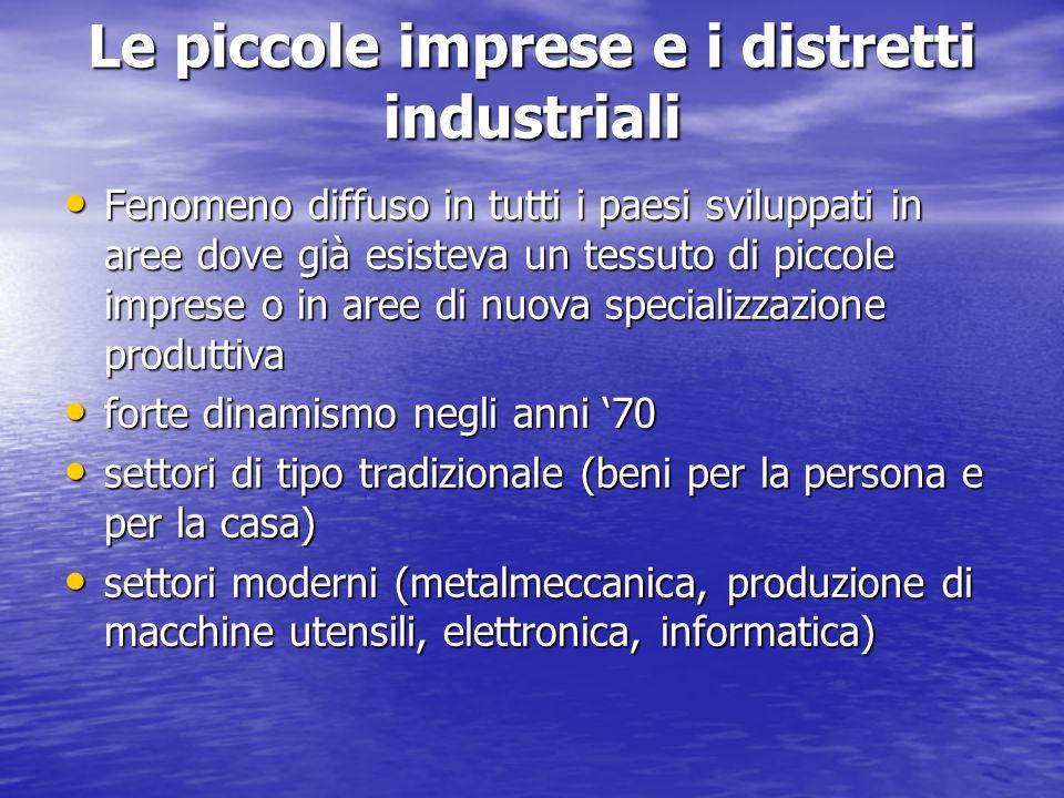 Le piccole imprese e i distretti industriali Fenomeno diffuso in tutti i paesi sviluppati in aree dove già esisteva un tessuto di piccole imprese o in