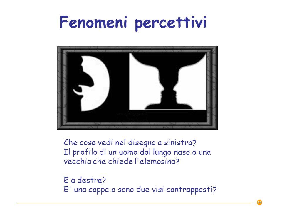 Che cosa vedi nel disegno a sinistra? Il profilo di un uomo dal lungo naso o una vecchia che chiede l'elemosina? E a destra? E' una coppa o sono due v