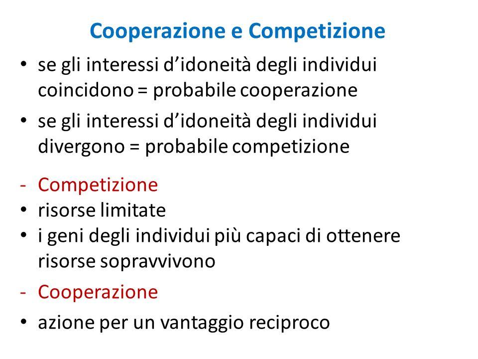 Cooperazione e Competizione se gli interessi didoneità degli individui coincidono = probabile cooperazione se gli interessi didoneità degli individui