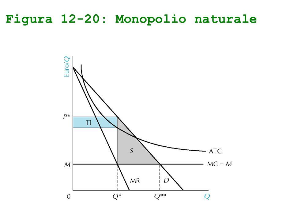 Figura 12-20: Monopolio naturale