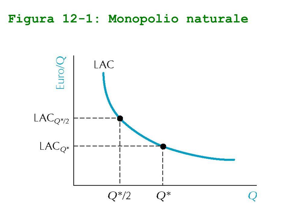 Figura 12-1: Monopolio naturale