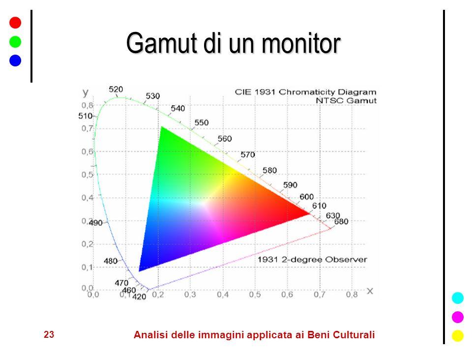 23 Analisi delle immagini applicata ai Beni Culturali Gamut di un monitor