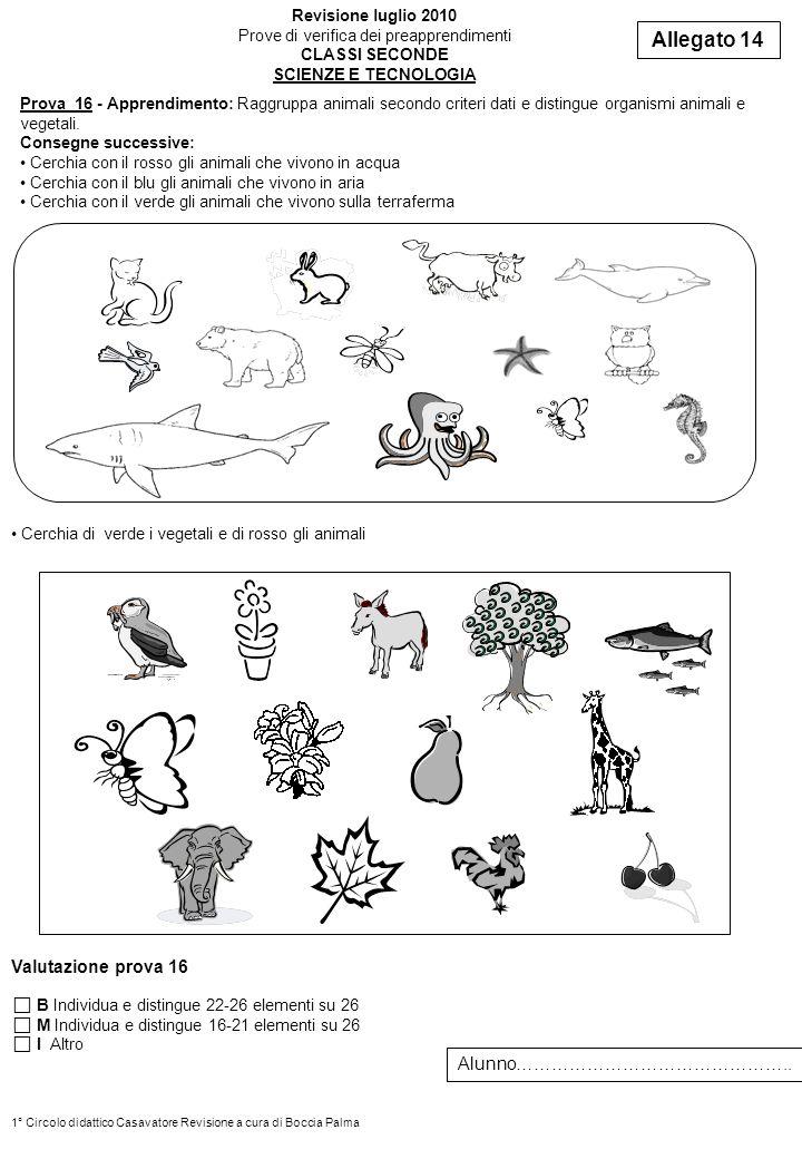 Prova 16 - Apprendimento: Raggruppa animali secondo criteri dati e distingue organismi animali e vegetali. Consegne successive: Cerchia con il rosso g