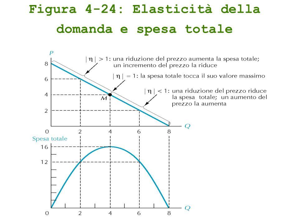 Figura 4-24: Elasticità della domanda e spesa totale