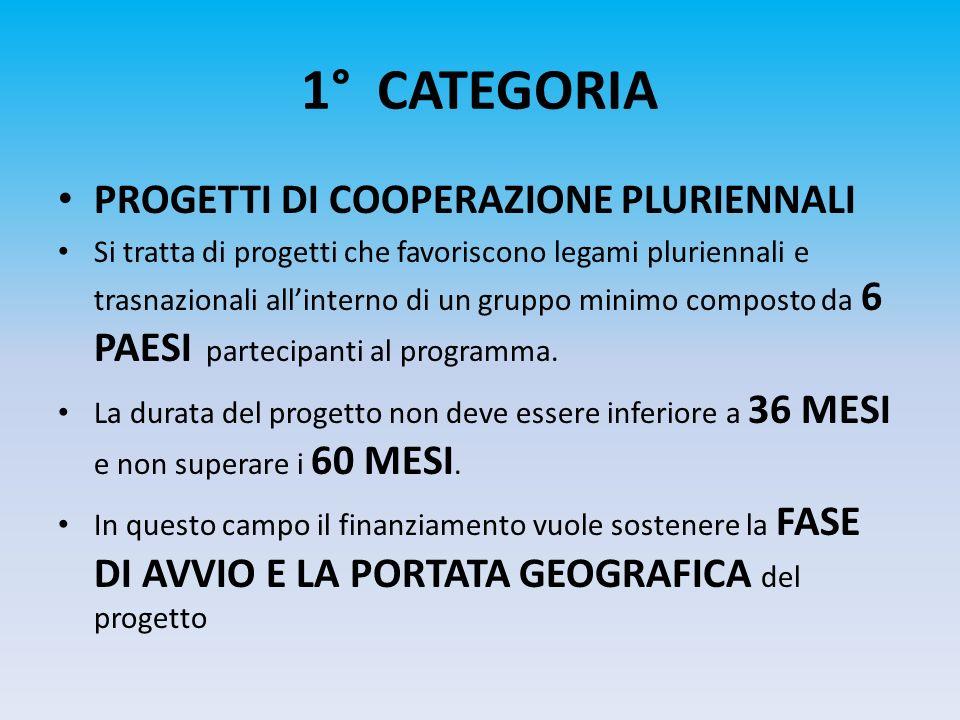 1° CATEGORIA PROGETTI DI COOPERAZIONE PLURIENNALI Si tratta di progetti che favoriscono legami pluriennali e trasnazionali allinterno di un gruppo min