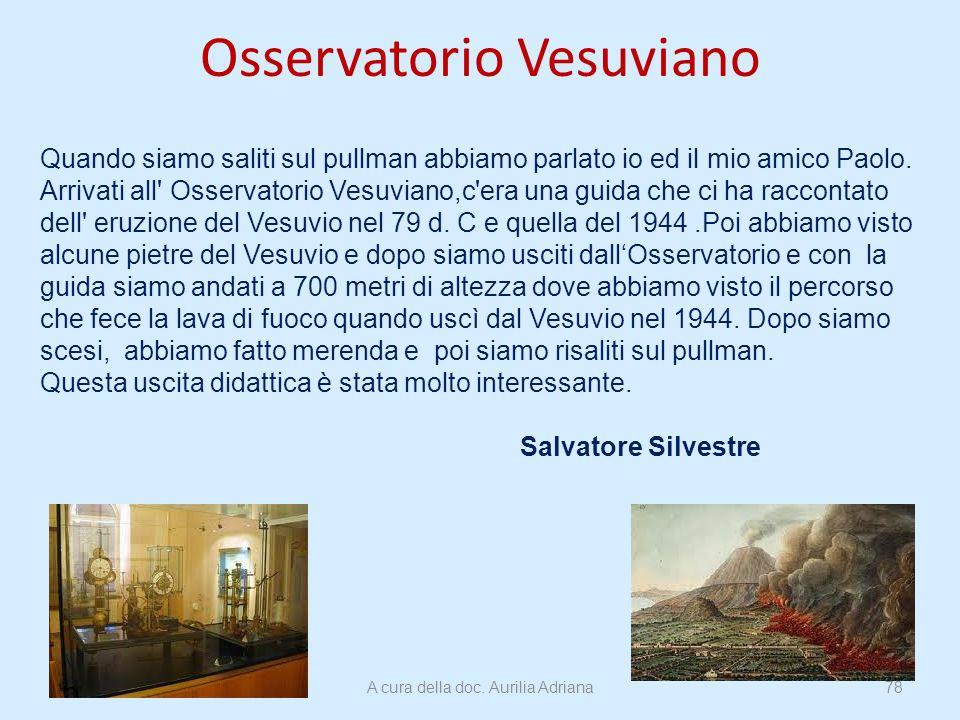 Osservatorio Vesuviano Quando siamo saliti sul pullman abbiamo parlato io ed il mio amico Paolo. Arrivati all' Osservatorio Vesuviano,c'era una guida