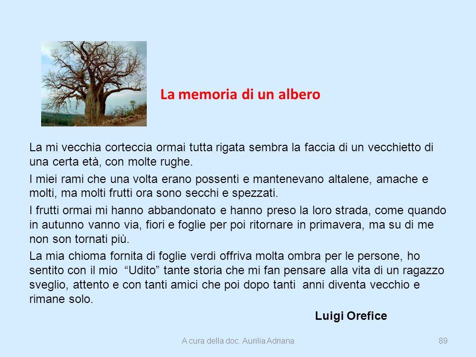 La memoria di un albero La mi vecchia corteccia ormai tutta rigata sembra la faccia di un vecchietto di una certa età, con molte rughe. I miei rami ch