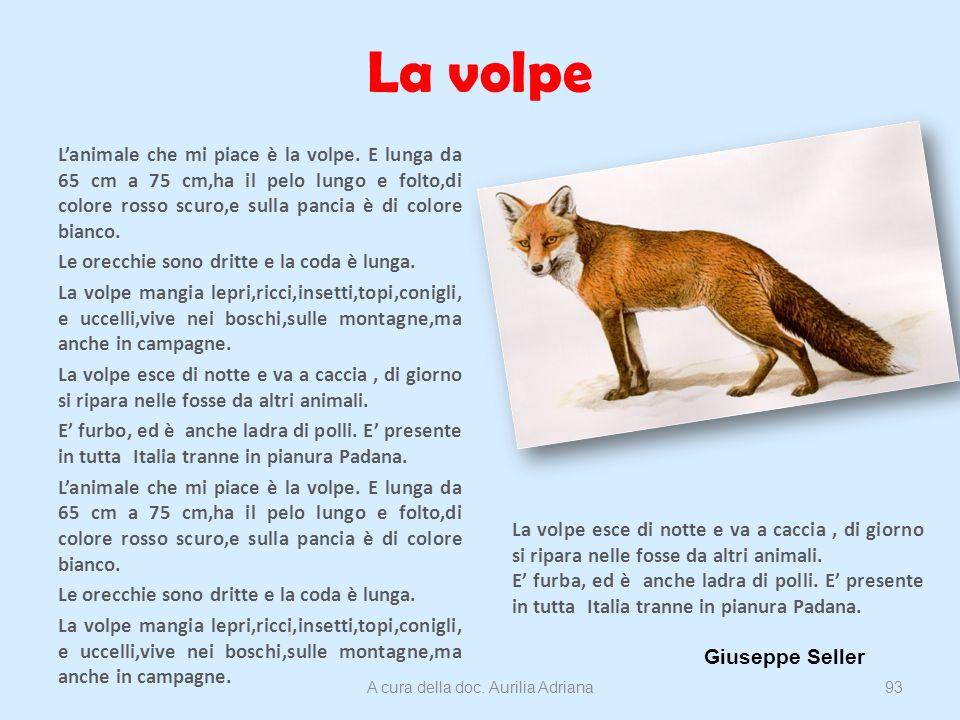 La volpe Lanimale che mi piace è la volpe. E lunga da 65 cm a 75 cm,ha il pelo lungo e folto,di colore rosso scuro,e sulla pancia è di colore bianco.