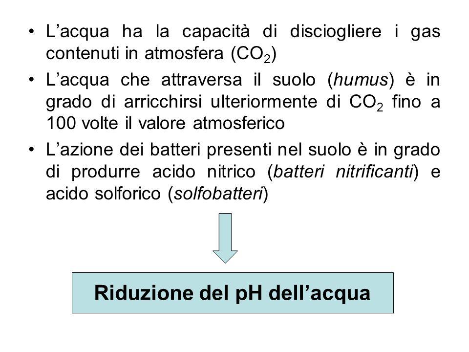 Lacqua ha la capacità di disciogliere i gas contenuti in atmosfera (CO 2 ) Lacqua che attraversa il suolo (humus) è in grado di arricchirsi ulteriorme