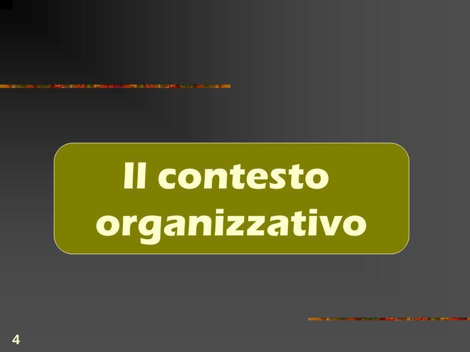 4 Il contesto organizzativo
