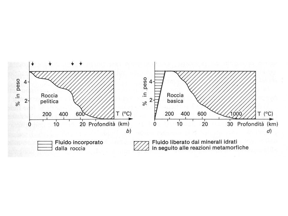 Metamorfismo di rocce magmatiche basiche in facies eclogitica ECLOGITE onfacite + quarzo + granato ± fengite
