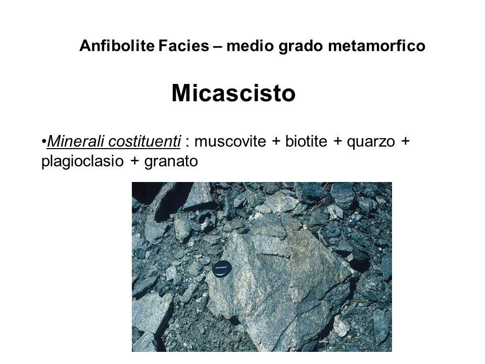 Anfibolite Facies – medio grado metamorfico Micascisto Minerali costituenti : muscovite + biotite + quarzo + plagioclasio + granato