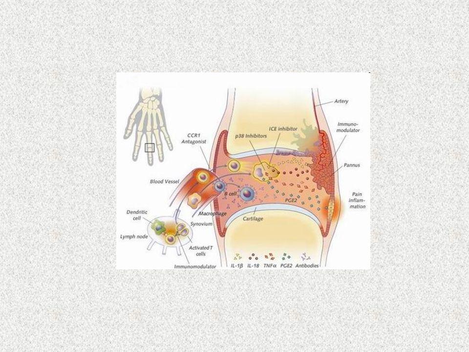 Infezioni Reazioni allergiche Febbri periodiche Malattie metaboliche Malattie vascolari Malattie cutanee Malattie reumatologiche Malattie autoimmuni E