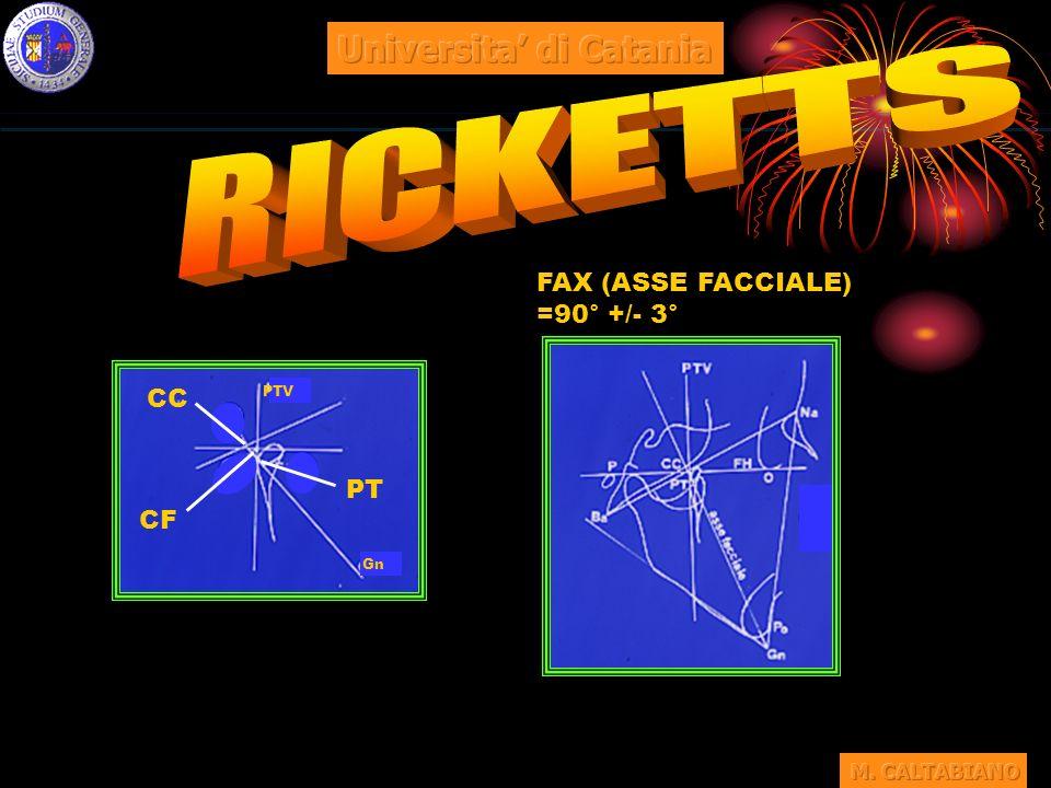 FAX (ASSE FACCIALE) =90° +/- 3° CF PT CC PTV Gn