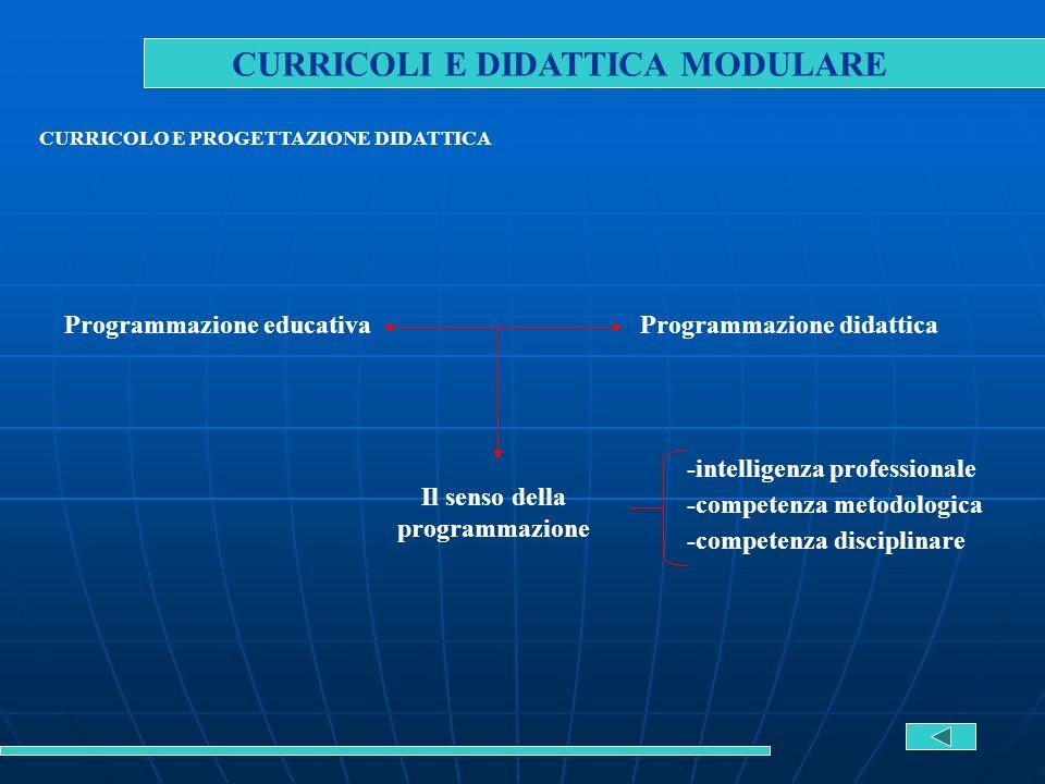 CURRICOLI E DIDATTICA MODULARE CURRICOLO E PROGETTAZIONE DIDATTICA Programmazione educativaProgrammazione didattica Il senso della programmazione -int