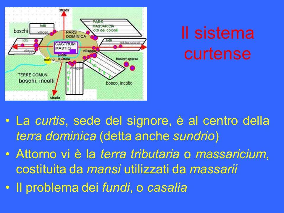 Il sistema curtense La curtis, sede del signore, è al centro della terra dominica (detta anche sundrio) Attorno vi è la terra tributaria o massaricium
