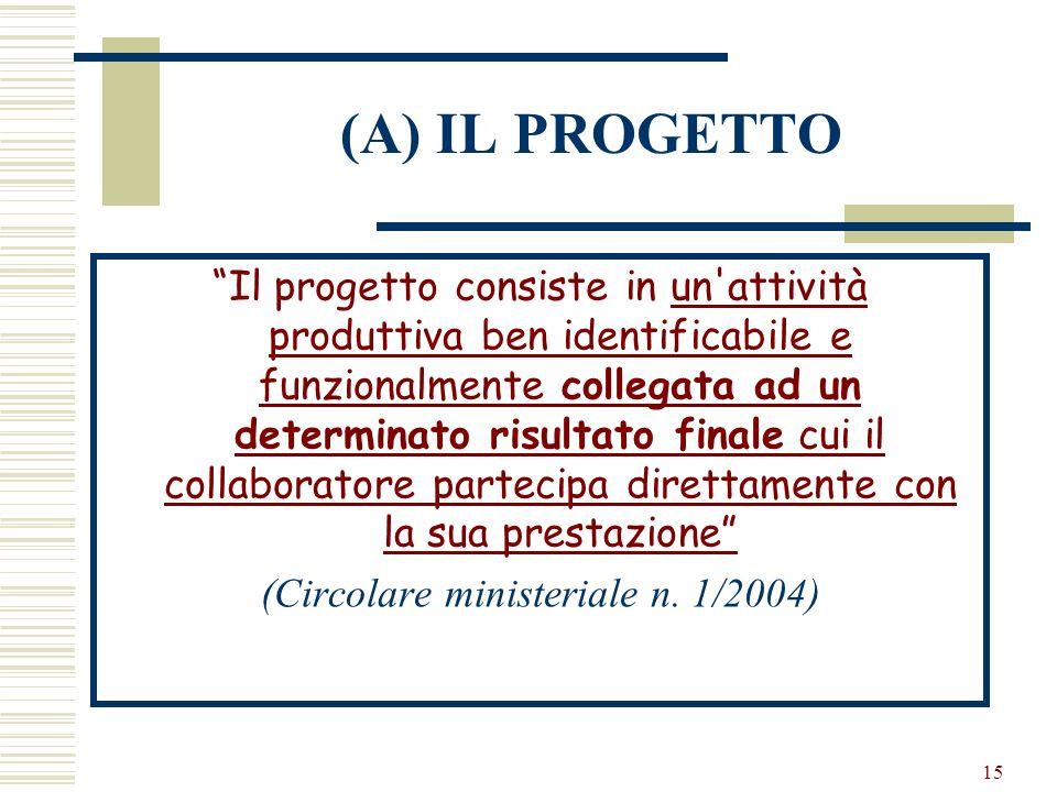 15 (A) IL PROGETTO Il progetto consiste in un'attività produttiva ben identificabile e funzionalmente collegata ad un determinato risultato finale cui
