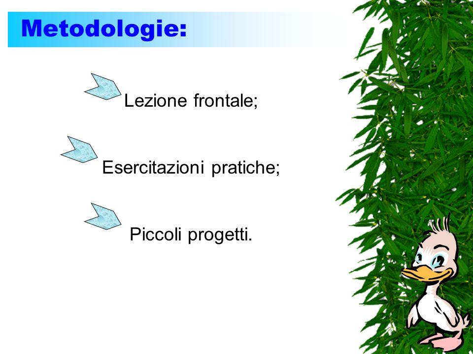 Metodologie: Esercitazioni pratiche; Lezione frontale; Piccoli progetti.