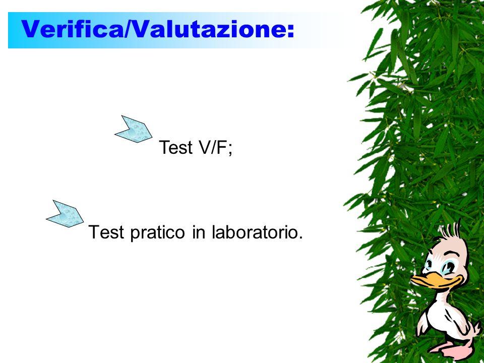 Verifica/Valutazione: Test pratico in laboratorio. Test V/F;