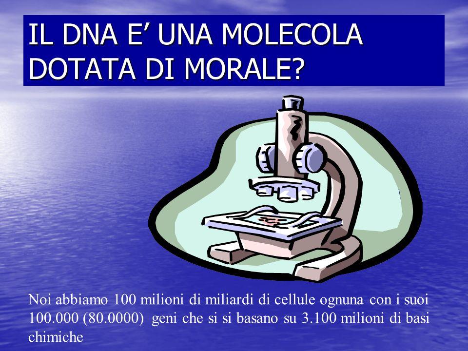 IL DNA E UNA MOLECOLA DOTATA DI MORALE? Noi abbiamo 100 milioni di miliardi di cellule ognuna con i suoi 100.000 (80.0000) geni che si si basano su 3.