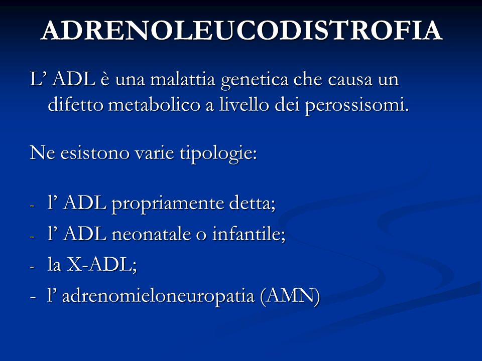 ADRENOLEUCODISTROFIA L ADL è una malattia genetica che causa un difetto metabolico a livello dei perossisomi. Ne esistono varie tipologie: - l ADL pro
