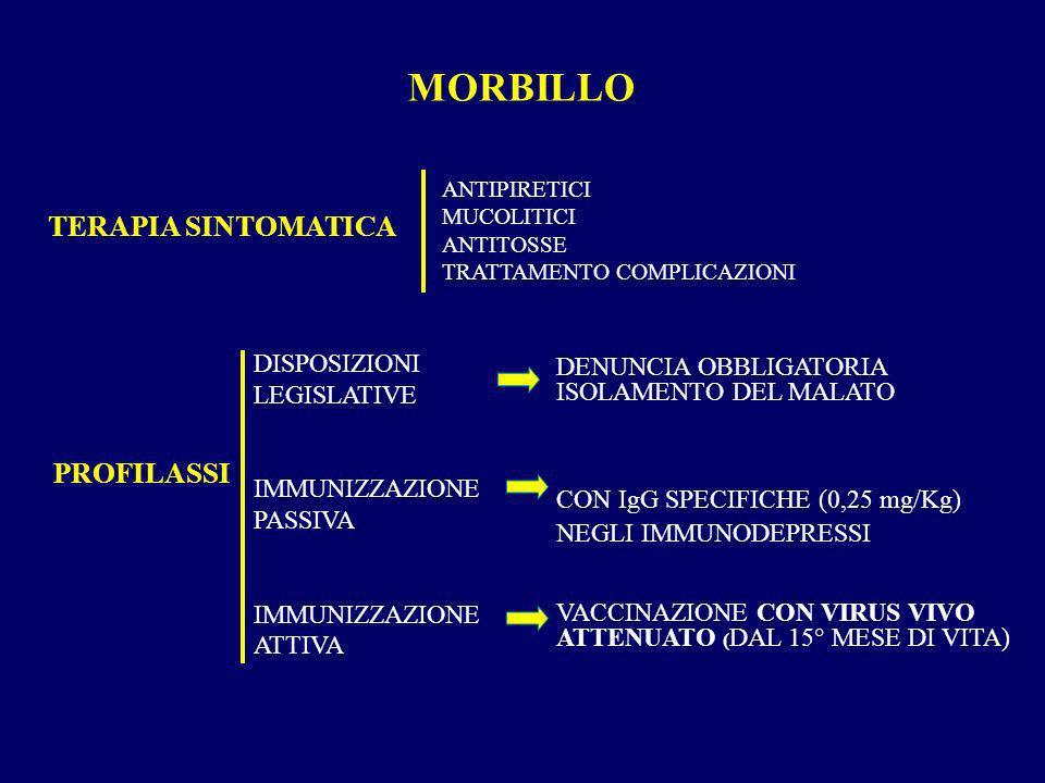 MORBILLO TERAPIA SINTOMATICA PROFILASSI DISPOSIZIONI LEGISLATIVE IMMUNIZZAZIONE PASSIVA IMMUNIZZAZIONE ATTIVA ANTIPIRETICI MUCOLITICI ANTITOSSE TRATTA