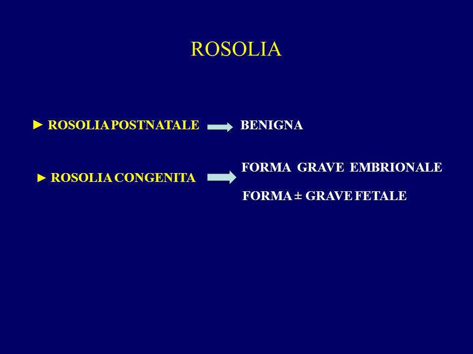 ROSOLIA ROSOLIA POSTNATALE BENIGNA FORMA GRAVE EMBRIONALE FORMA ± GRAVE FETALE ROSOLIA CONGENITA