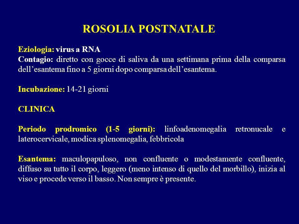 ROSOLIA POSTNATALE Eziologia: virus a RNA Contagio: diretto con gocce di saliva da una settimana prima della comparsa dellesantema fino a 5 giorni dop
