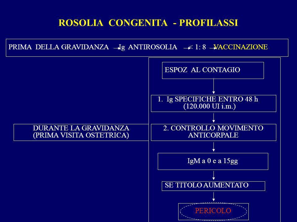 ROSOLIA CONGENITA - PROFILASSI DURANTE LA GRAVIDANZA (PRIMA VISITA OSTETRICA) ESPOZ. AL CONTAGIO IgM a 0 e a 15gg 1. Ig SPECIFICHE ENTRO 48 h (120.000
