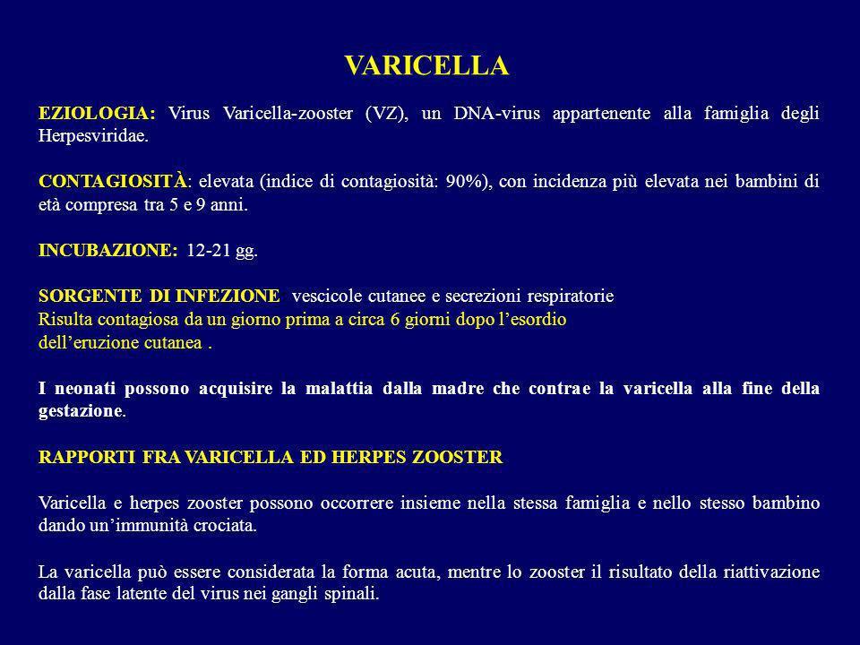 VARICELLA EZIOLOGIA: Virus Varicella-zooster (VZ), un DNA-virus appartenente alla famiglia degli Herpesviridae. CONTAGIOSITÀ CONTAGIOSITÀ: elevata (in