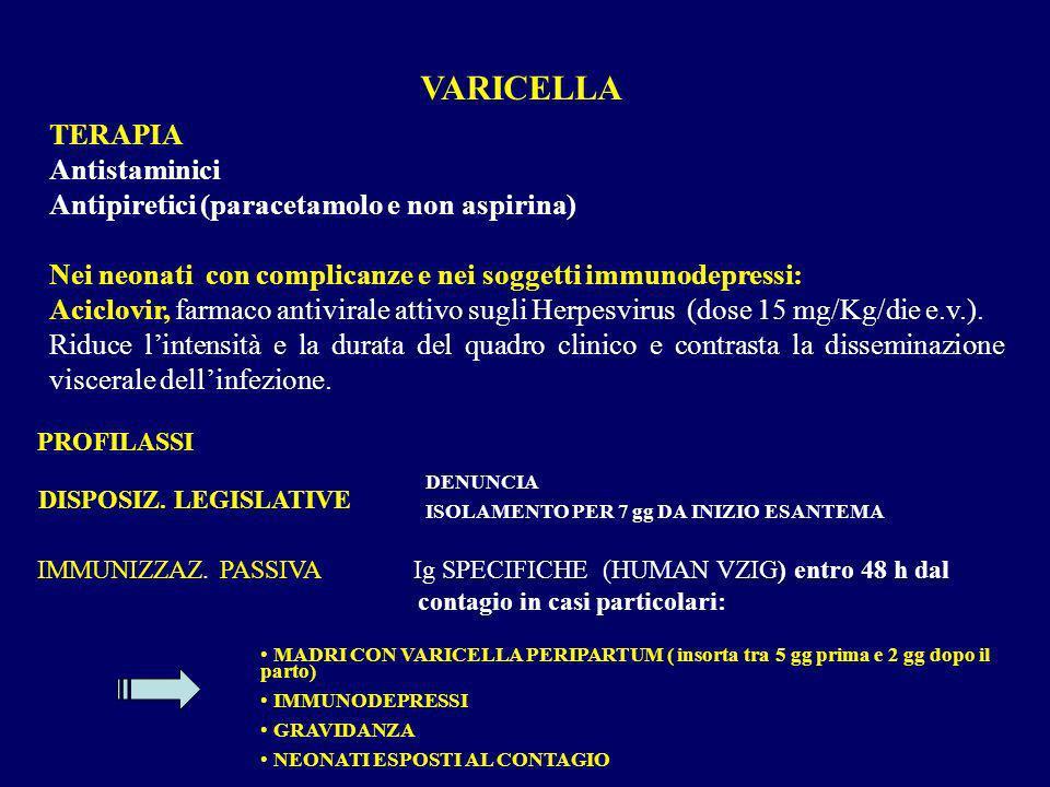 TERAPIA Antistaminici Antipiretici (paracetamolo e non aspirina) Nei neonati con complicanze e nei soggetti immunodepressi: Aciclovir, farmaco antivir