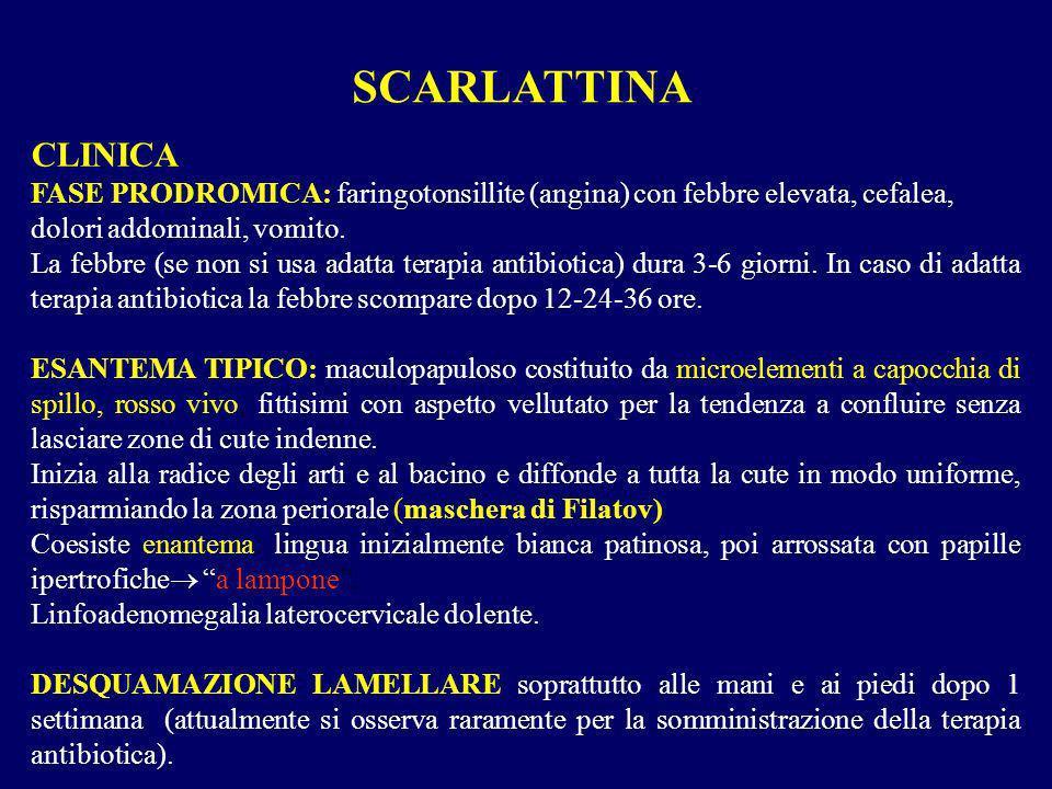 CLINICA FASE PRODROMICA: faringotonsillite (angina) con febbre elevata, cefalea, dolori addominali, vomito. La febbre (se non si usa adatta terapia an
