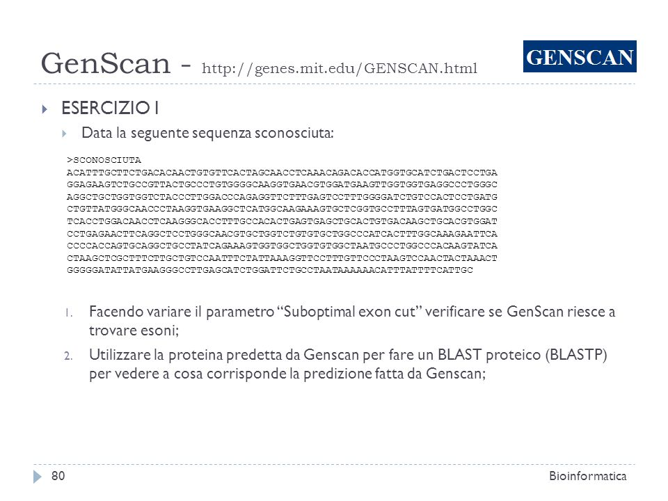 GenScan - http://genes.mit.edu/GENSCAN.html Bioinformatica80 ESERCIZIO I Data la seguente sequenza sconosciuta: >SCONOSCIUTA ACATTTGCTTCTGACACAACTGTGT
