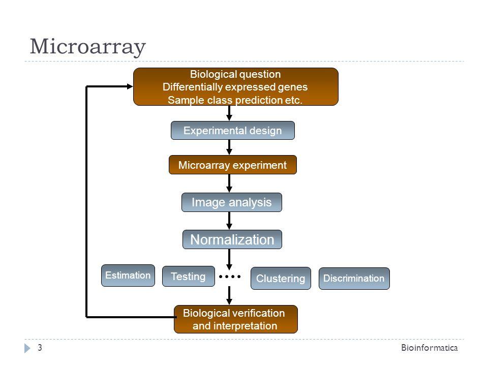 Microarray Data Mining Bioinformatica14 Profiling data Profiling data Genes patterns (data mining: max freq itemsets) Genes patterns (data mining: max freq itemsets) Model validation (KFCV) Model validation (KFCV) Discretization Filtering (i.e.