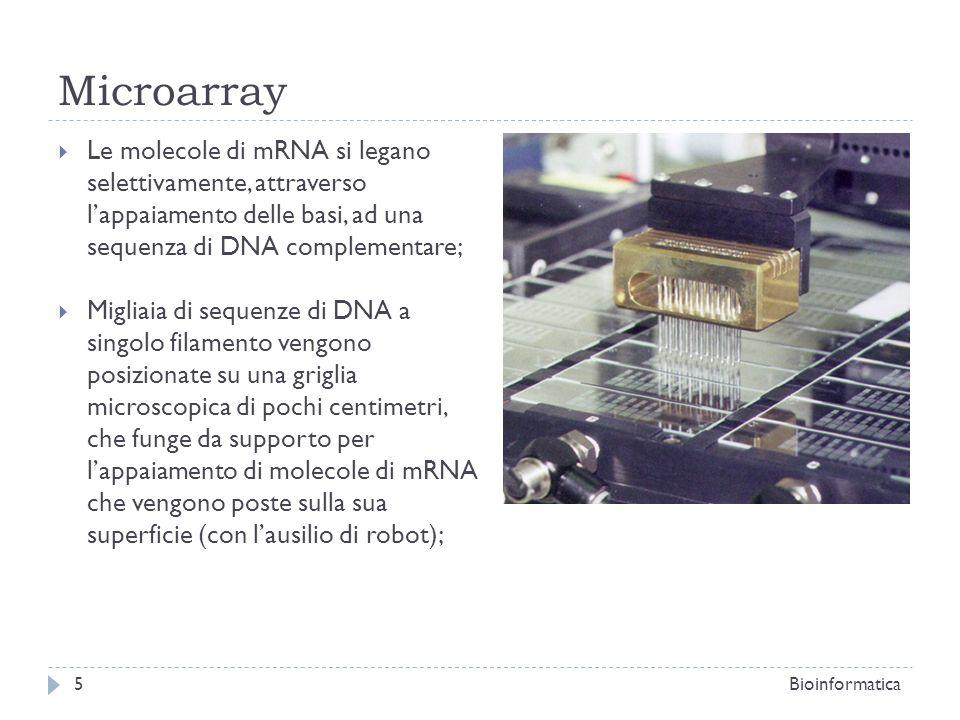 Microarray Le molecole di mRNA si legano selettivamente, attraverso lappaiamento delle basi, ad una sequenza di DNA complementare; Migliaia di sequenz