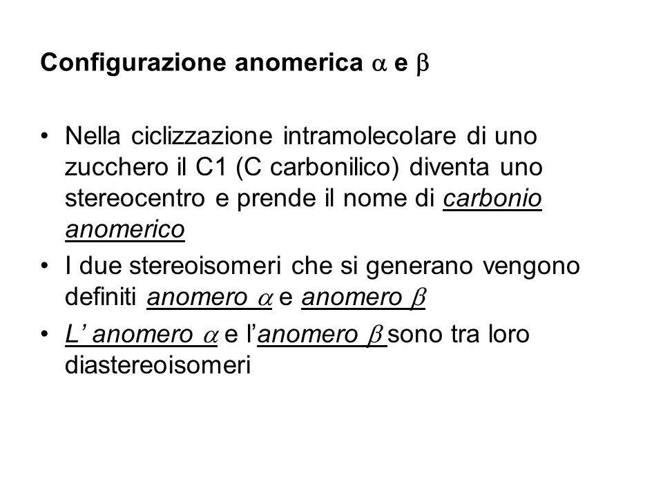 Configurazione anomerica e Nella ciclizzazione intramolecolare di uno zucchero il C1 (C carbonilico) diventa uno stereocentro e prende il nome di carb
