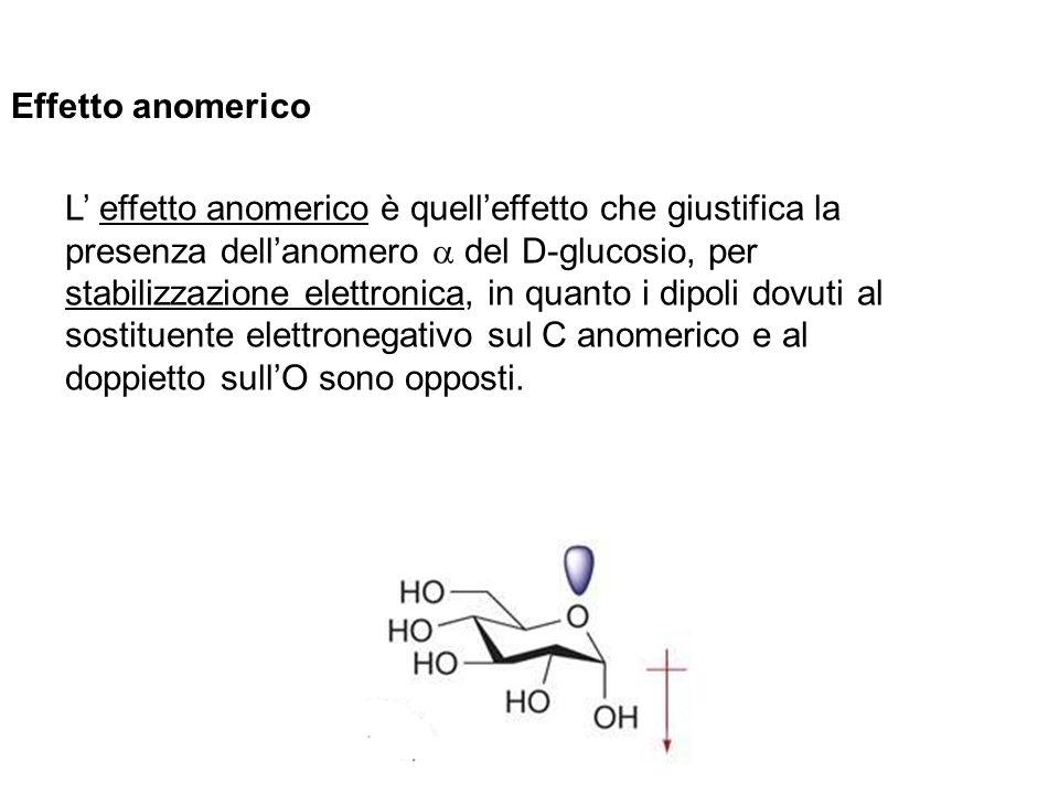 Effetto anomerico L effetto anomerico è quelleffetto che giustifica la presenza dellanomero del D-glucosio, per stabilizzazione elettronica, in quanto