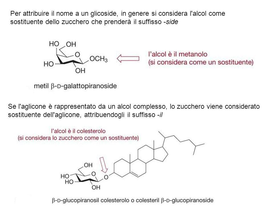 Per attribuire il nome a un glicoside, in genere si considera l'alcol come sostituente dello zucchero che prenderà il suffisso -side Se l'aglicone è r