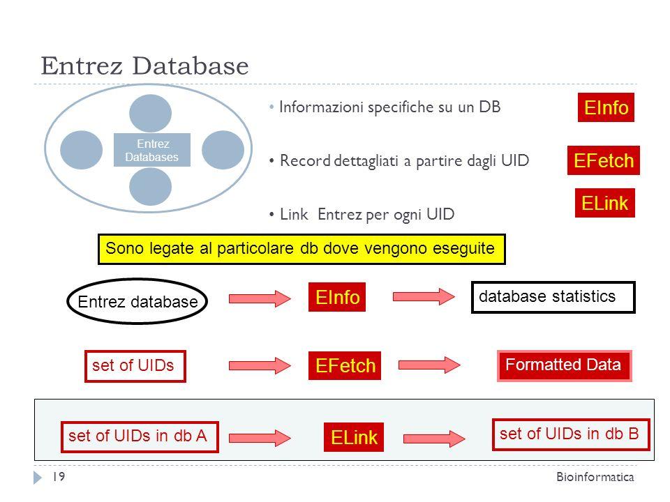 Entrez Database Entrez Databases EInfo EFetch ELink Informazioni specifiche su un DB Record dettagliati a partire dagli UID Link Entrez per ogni UID S